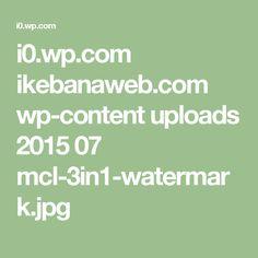 i0.wp.com ikebanaweb.com wp-content uploads 2015 07 mcl-3in1-watermark.jpg