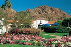 La Quinta Resort & club, A Waldorf Astoria - Palm Springs, Calif.  85 year old fabled resort once popular among the Hollywood elite such as Clark Gable, Carole Lombard, Bette Davis,  Joan Crawford, William Powell and Errol Flynn