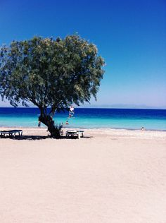 Trianta - Ialysos X Nisos Rodos X Dodekanesos, GREECE - Vacation List, Greece Vacation, Rhodes, Travel Around The World, Around The Worlds, Greece Tours, Places To Travel, Places To Visit, Greek Beauty