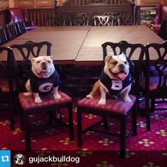 Photo taken by @butlerblue3 on Instagram, pinned via the InstaPin iOS App! (01/15/2015)