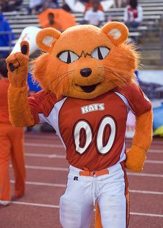 12 Things New Bearkats Need To Know