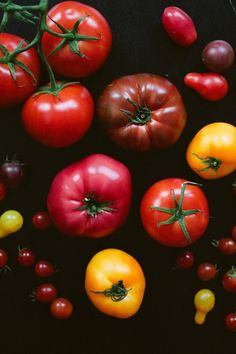 Tomatoes | VSCO