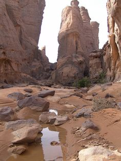 Tassili National Park, #Algeria