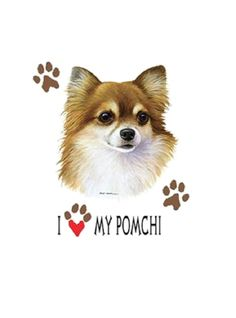 Pomchi T SHIRT, I Love My Pomchi Dog T SHIRT, ( Sweatshirt, Quilt Fabric Block, Tote Bag, Apron, Available On Request) #893m by AlwaysInStitchesCo on Etsy
