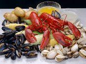 Summer's official food: lobster.