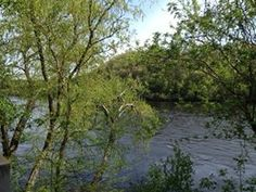 The lovely Chippewa River, which cuts right through UWEC campus.