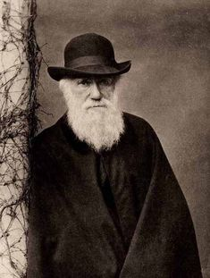 Charles Robert Darwin (12 February 1809 – 19 April 1882) was an English naturalist. He established that all species of life have descended over time from common ancestry, and proposed the scientific theory that this branching pattern of evolution resulted from a process that he called natural selection.