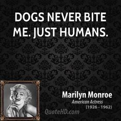 Marilyn Monroe Quotes, Quotations, Phrases, Verses and Sayings. Great Quotes, Quotes To Live By, Me Quotes, Funny Quotes, Inspirational Quotes, Qoutes, Famous Quotes, Pisces Quotes, Motivational