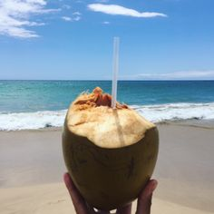 Coco and Beach. Hapuna Beach, Hawaii.