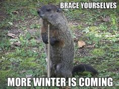 Groundhog day meets Game of Thrones