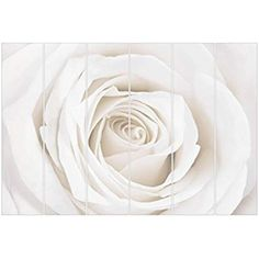 Bilderwelten Raumteiler Tränen Einer Lilie 250x120cm inkl. transparenter Halterung: Amazon.de: Küche & Haushalt Icing, Panel Room Divider, Lilies, Household