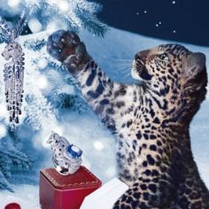 Cartier - Can I have both the ornament and the leopard?