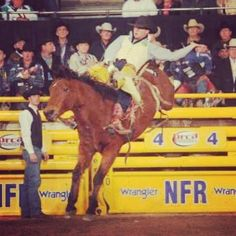 Photo of the day: Caleb Bennett's winning ride on Carr Pro Rodeo's Wise Guy was the bareback horse's final trip. –PRCA ProRodeo photo by Larry Smith #WNFR2013 #Round1 #RodeoChat
