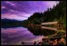 I used to live one block from this. Walked there almost every day. No wonder I miss WA. Lake Padden at sunrise. Western Washington University, Washington State, Great Places, Places To Go, Beautiful Places, Bellingham Washington, Evergreen State, My Fantasy World, Nature Photography