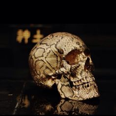 Snakeskin skull. So cool