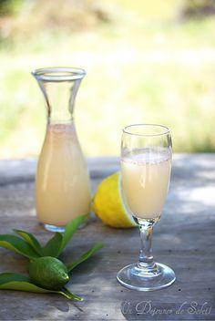 Lemon sherbet avec un peu de lait canelle 4 citrons eau miel