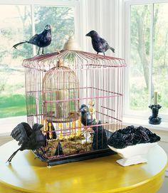 Gone to the Birds    Give an old birdcage a spooky upgrade by surrounding it with fake ravens and filling it with candles.