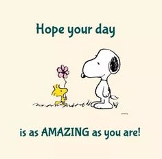 Charlie Brown with Snoopy. Images Snoopy, Snoopy Pictures, Funny Pictures, Phrase Cute, Charlie Brown Quotes, Peanuts Quotes, Snoopy Love, Snoopy Hug, Snoopy Quotes Love