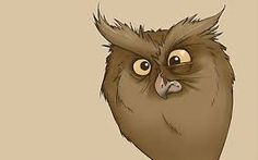 Картинки по запросу смешные совы рисунки