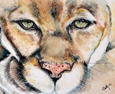 Face the Lion - Out of Darkness: Diane Beatty - Paintings & Prints Animals Birds & Fish Wild Cats Mountain Lion - ArtPal Mountain Lion, Watercolor Print, Pet Birds, Darkness, My Arts, Paintings, Fish, Cats, Prints