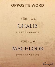Urdu Words With Meaning, Hindi Words, Urdu Love Words, Arabic Words, New Words, Unusual Words, Rare Words, English Vocabulary Words, English Words