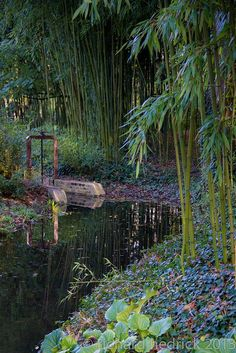Claude Monet Giverny Garden. Giverny France.