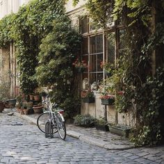 bikes, window boxes and flowers, all on a cobblestone street.