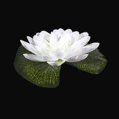 White LED Floating Lily Lights Up. Illuminated lilies are perfect for pools, ponds, centerpieces and more. All lilies are white with a gre. White Lily Flower, White Lilies, White Orchids, Romantic Centerpieces, Wedding Decorations, Wedding Ideas, Wedding Details, Wedding Favors, Flower Vases