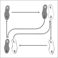 rumba dance step diagram dance pinterest dancing ballroom rh pinterest com basic waltz steps diagram waltz 18 steps diagram