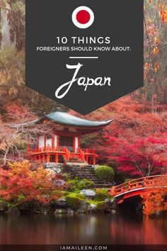 Japan can be quite an eccentric country, so with the help of 'locals', here are some 10 interesting Japan facts you must know! // #Trivia #Japan Magical Vacations Travel, Vacation Trips, Dream Vacations, Asia Travel, Japan Travel, Japan Facts, Adventures Abroad, Travel Guides, Travel Tips