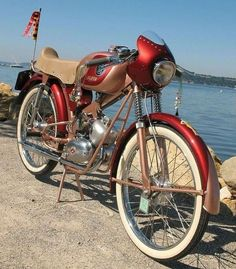 PALOMA Super Strada Flash Motorcycle Images, Motorcycle Design, Racing Motorcycles, Vintage Motorcycles, Scooters, 50cc Moped, Classic Bikes, Drag Cars, Vintage Bicycles
