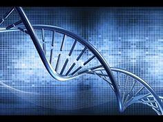 Biochemici slaan data lange tijd op in DNA - IT Pro - Nieuws - Tweakers