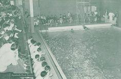 1946 swim meet Oregon beats Oregon State. From the 1946 Oregana (University of Oregon yearbook). www.CampusAttic.com