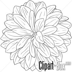 line art coloring pages flowers Online Coloring Pages, Coloring Book Pages, Dahlia Flower, Flower Art, Flower Sketches, Drawing Flowers, Flower Outline, For Elise, Art Therapy Projects