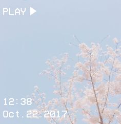 cute pastel pink and blue aesthetic flowers 🌷 Light Blue Aesthetic, Aesthetic Grunge, Aesthetic Photo, Pink Aesthetic, Aesthetic Pictures, Aesthetic Japan, Aesthetic Wallpapers, Polaroid, Scenery