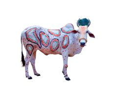 By removing the background and real-life context, these photos of living, decorated cows emphasize Pop Art sensibilities during Hindu traditional festivals celebrating the harvest and bovine sacredness