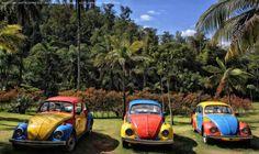 https://flic.kr/p/HakJiE   INHOTIM . May 2016  13   Inhotim, Museo y parque ecologico natural. Brumadinho, Minas Gerais. Fotografia: Artexpreso . Rodriguez Udias . *Photochrome Artwork Edition / BH, Brasil . May 2016 .. Website: rodudias.wix.com/artexpreso #Inhotim #artexpreso #photochrome #minasgerais #soubh