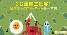 3C護眼三劍客!葉黃素+蝦紅素+DHA缺一不可 | 陳瑩山 | 眼科 | 健康新知 | 華人健康網