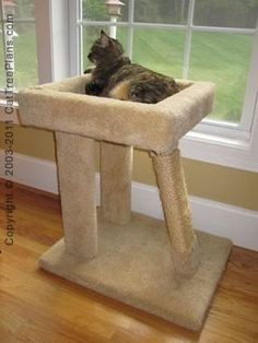 1000 images about diy cat tree plans on pinterest cat for How to make a cat bed easy