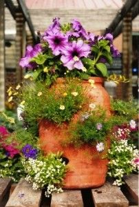 like the idea of different plants in a strawberry pot-----for my herbs, maybe? Container Flowers, Flower Planters, Container Plants, Garden Planters, Container Gardening, Flower Pots, Strawberry Planters, Strawberry Garden, Garden Yard Ideas