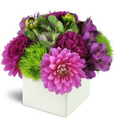 Dahlias, carnations, and alstroemeria blooms with kale and green dianthus.