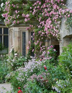 """""""We left most of the roses trained on the walls of the house, removing just those that were the wrong color to leave a palette of pink and cream with the occasional shock of orange or apricot,"""" explains Arne Maynard."""