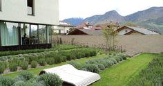 Giardino del chiostro, distretto socio-sanitario - Vivaio Rottensteiner…