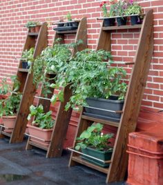 HomePersonalShopper: Jardines/huertos verticales
