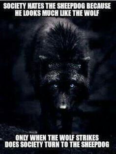 This is not a werewolf drawing, this a photograph by an incredible photographer named Carl Cook. This wolf is a female named Destiny. I had found the wolf series many years ago. Unfortunately, his site seems to be gone. Badass Quotes, Best Quotes, Life Quotes, Military Quotes, Military Humor, Military Style, Alpha Wolf, Timberwolf, Police Life