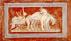 from the villa of Diomedes in Pompeii comes this beautiful fresco of a chariot with the symbols of Apollo (Cithar and tripod) and drawn by griffins