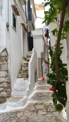 Whitewashed Sperlonga: Charming narrow streets of the whitewashed coastal hill town of  Sperlonga