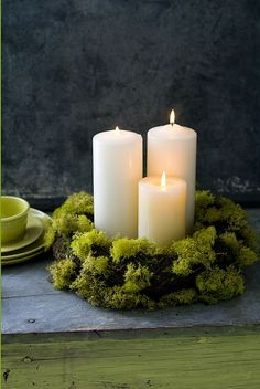 moss + candles