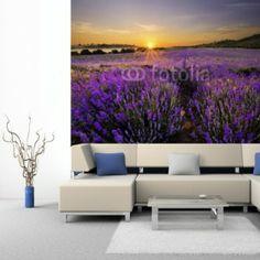 Fototapeta na ścianę - SUNSET OVER LAVENDER FIELD | Photograph wallpaper - SUNSET OVER LAVENDER FIELD | 100PLN #fototapeta #dekoracja_ściany #home_decor #interior_decor #photograph_wallpaper #wallpaper #flower #flower_field #sunset #lawendowa_prowansja #lawenda #pole_lawendy #zachód_słońca