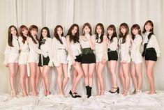 Yuri, Secret Song, Honda, Photo Scan, Doja Cat, Best Kpop, Japanese Girl Group, Famous Girls, Kim Min